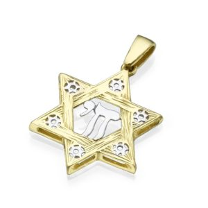 Star of David Intersecting Points Hai Two Tone 14k Gold Pendant - Baltinester Jewelry