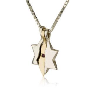 Land of Israel Star of David Pendant - Baltinester Jewelry