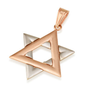 Rose and White Gold Matte Jewish Star Pendant - Baltinester Jewelry